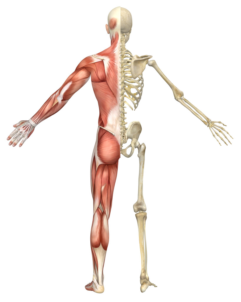 Knee Pain without Orthotics